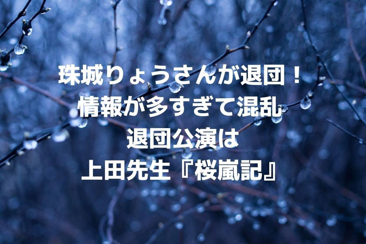 珠城りょうさんが退団発表!情報が多すぎて混乱 退団公演は上田久美子先生『桜嵐記』